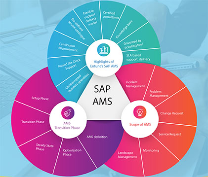 SAP-Support-and-Maintenance-service-in-Pune, SAP Support and Maintenance service